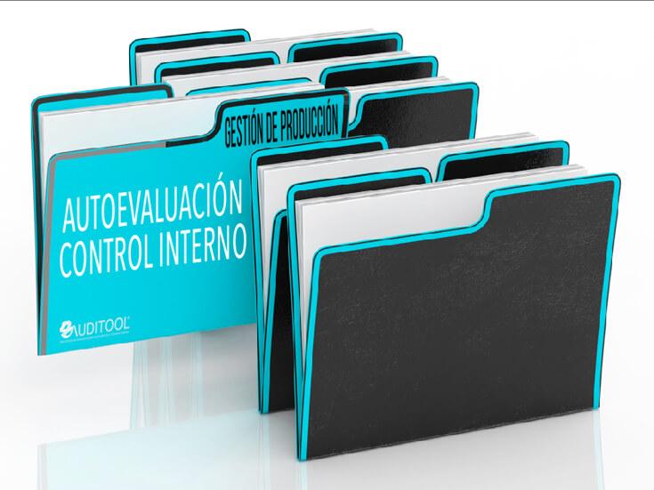 Autoevaluación del Sistema de Control Interno de un Programa de Gestión de Producción