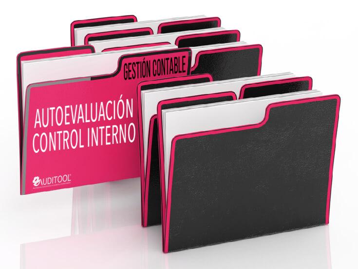 Autoevaluación del Sistema de Control Interno de un Proceso de Gestión Contable