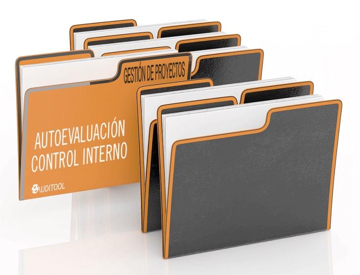 Autoevaluación del Sistema de Control Interno de un Proceso de Gestión de Proyectos
