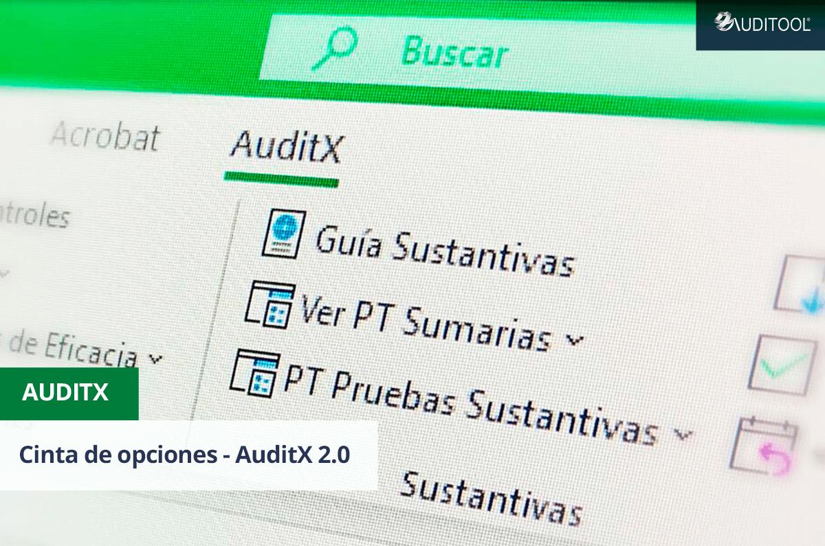 Cinta de opciones - AuditX 2.0