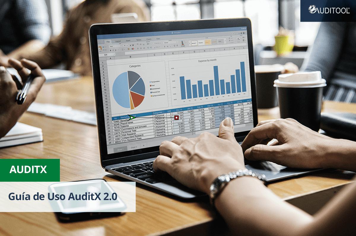 Guía de Uso AuditX 2.0