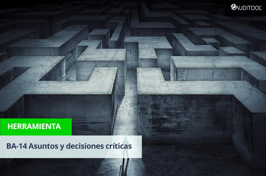 BA-14 Asuntos y decisiones críticas