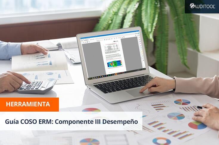 Guía COSO ERM: Componente III Desempeño