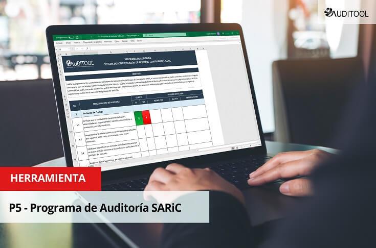 P5 - Programa de Auditoría SARiC