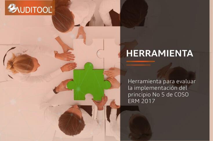 Herramienta para evaluar la implementación del principio No 5 de COSO ERM 2017