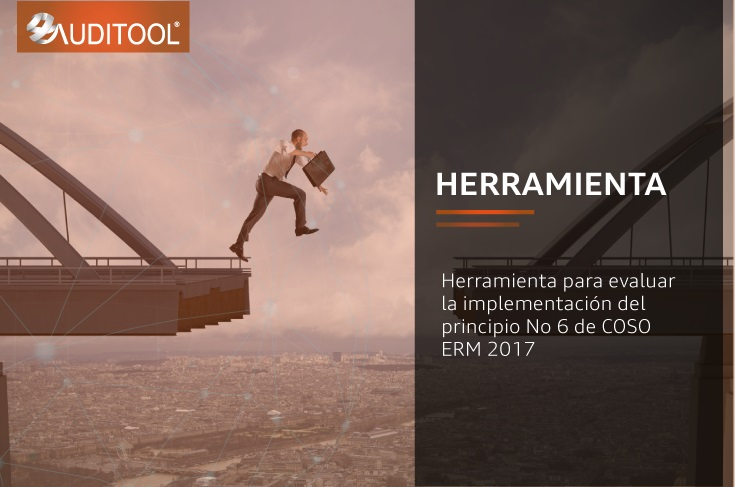 Herramienta para evaluar la implementación del principio No 6 de COSO ERM 2017