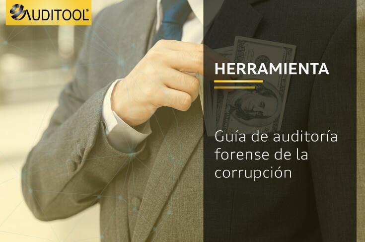 Guía de auditoría forense de la corrupción