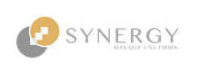 SYNERGY CONSULTORES AUDITORES S.A.S.