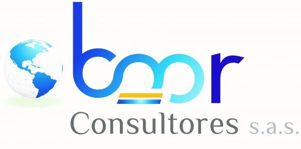 BMR Consultores S. A. S