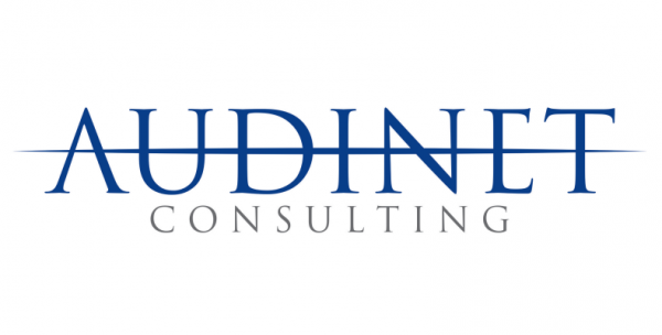 AUDINET CONSULTING SAS