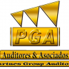 Partners Group Auditors