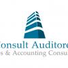 Consult Auditores Ltda.