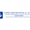 Consulting Financial & Audit, Auditores Externos