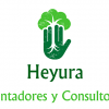 Heyura Contadores y Consultores